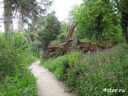 Мистические сады в Хэлигане