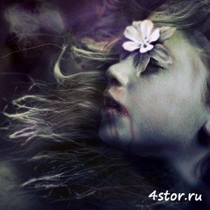Творчество Jenn Violetta