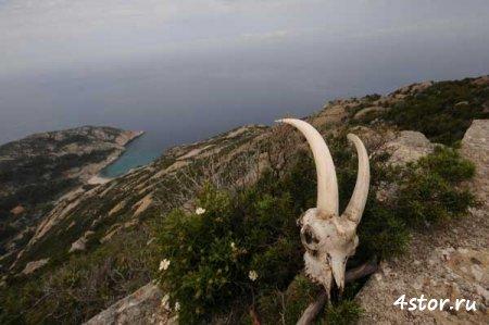 Загадочный остров Энваитенет