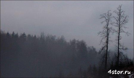 Долина духов и тропы проклятых в лесах Латвии