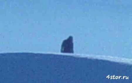 В Псковской области пристрелили снежного человека?