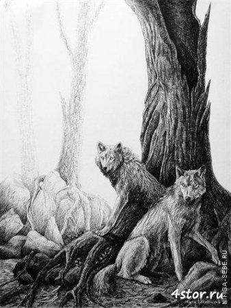 Работы художника Marta Sokolowska
