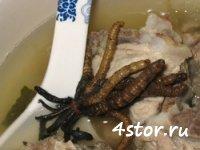 11 самых отвратительных блюд