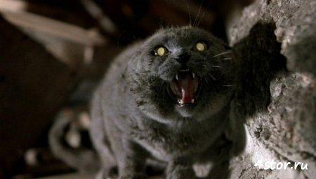 Обзор фильма «Кладбище домашних животных»