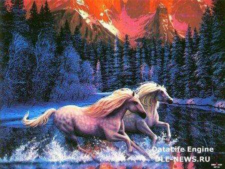 Водяные кони только ирландский миф или реальность