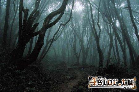 Легенда Ведьминой горы. Глава 4. Дежавю