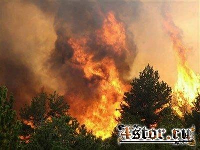 Демонические образы, рождённые в пожаре