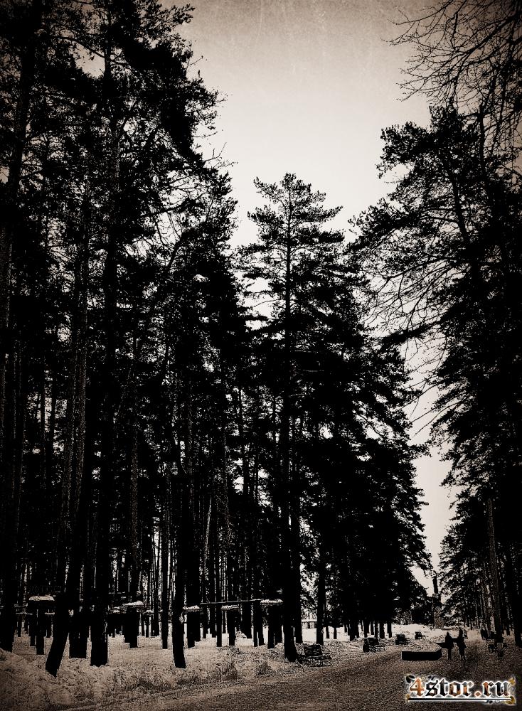 """""""Лесной Царь"""""""