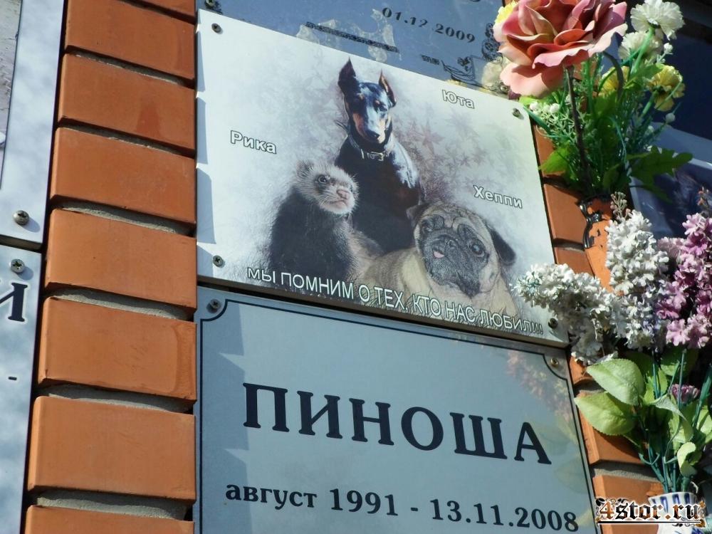 Кладбище домашних животных, Москва (Химки/Куркино)
